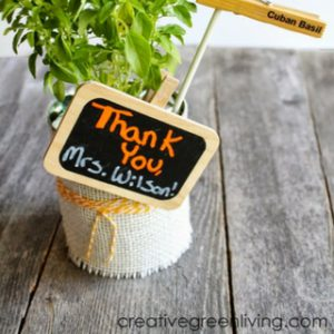 Thank You Gift Idea: Herbs in Rustic Can Planters