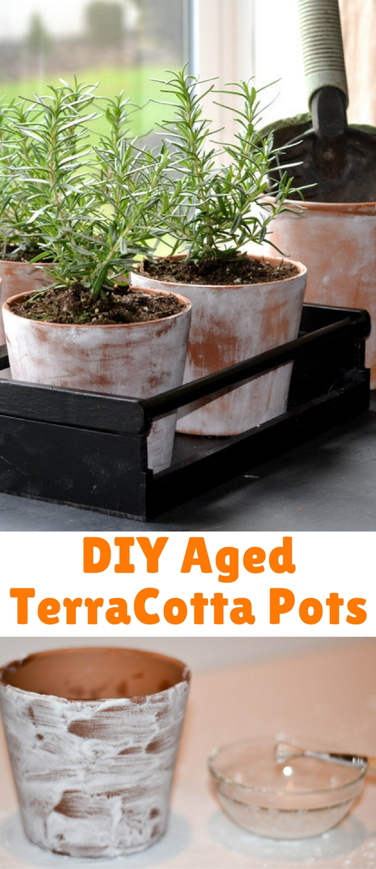 I love the look of an aged terracotta pot but not necessarily the price tag or the time it would take to create one, so I found a way to create my own DIY aged terracotta and I found that four pots would fit perfectly into my newly spray painted tray.