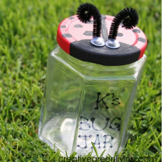How to Make a Recycled Ladybug Bug Jar