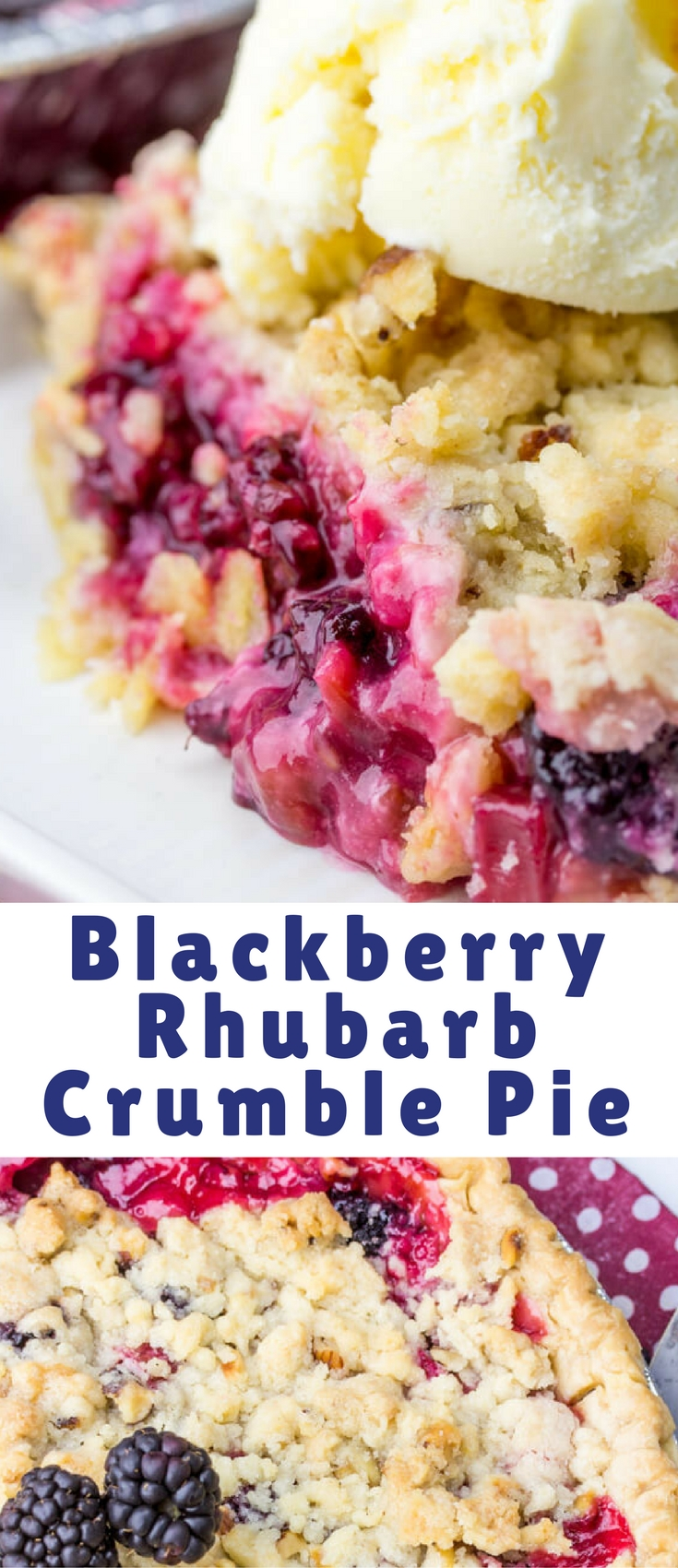 A delicious, tart and sweet pie this Blackberry Rhubarb Crumble Pie is the perfect mixture of flavors that just burst and excite your tastebuds.