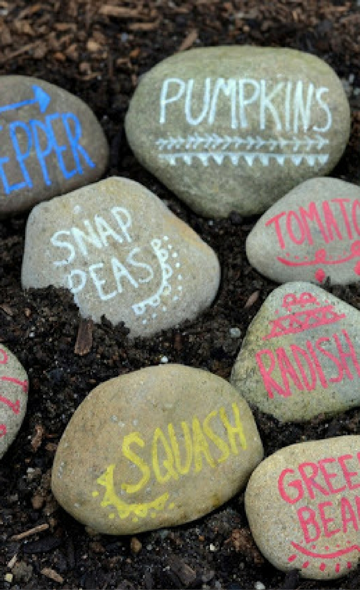 With the help of my youngest son, we collected rocks from our local beach and I used new Sharpie oil based paint markers to write on them. It's such an easy, inexpensive and fun way to liven up that garden.