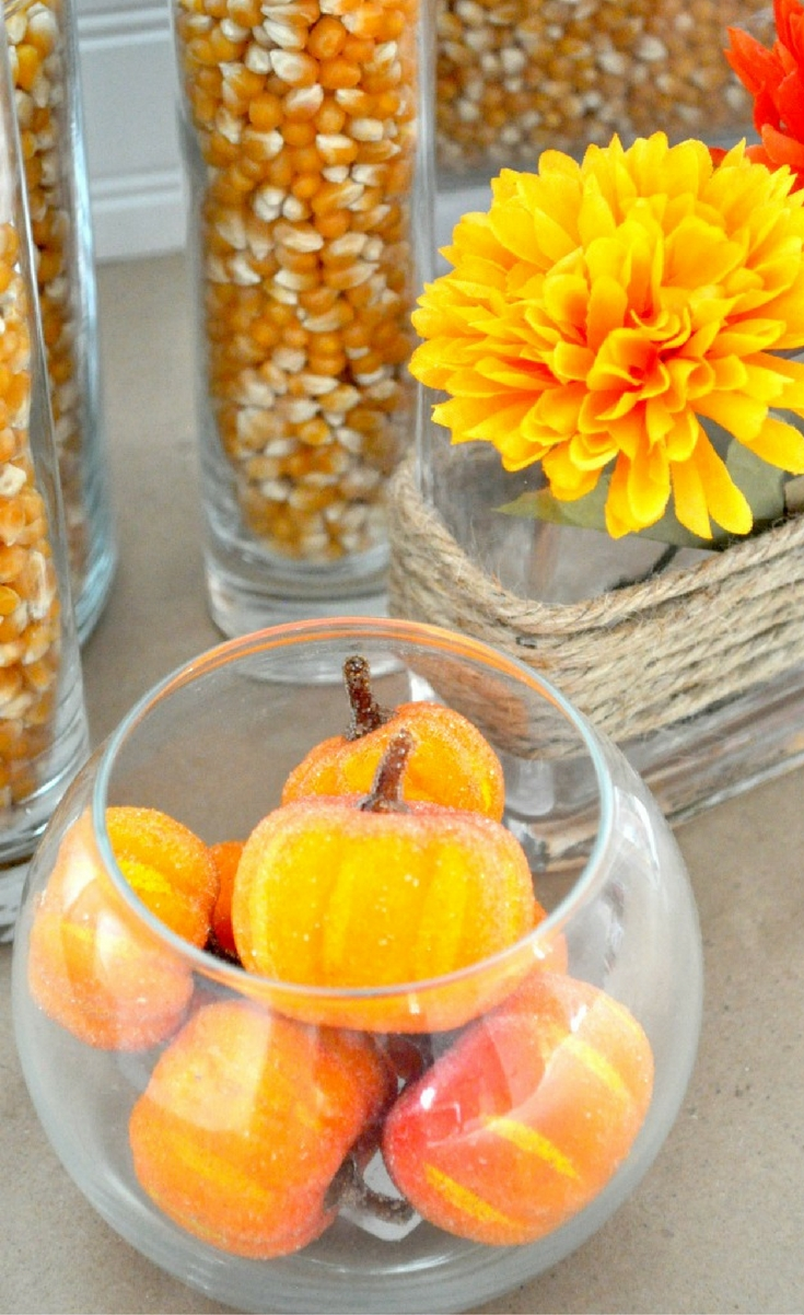 We are definitely a family on a budget. I can stare at a Crate and Barrel or Pottery Barn catalog all day, but I need to be thrifty. I am guessing some of you do, too, so I thought I would share some of my budget friendly Fall Decor ideas – VASE FILLERS!