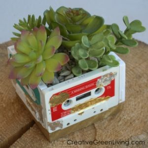 Make a Recycled Cassette Tape Succulent Planter