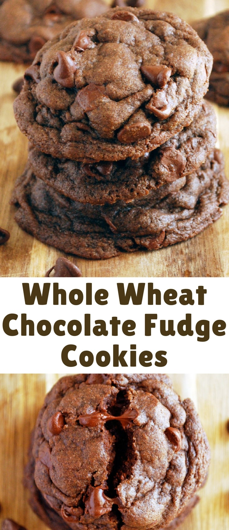 These Whole Wheat Chocolate Fudge Cookies are everything you want in one rich, fudgy cookie!